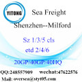 Shenzhen Port Sea Freight Shipping To Milford