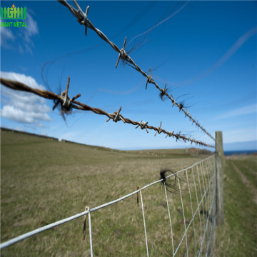 PVC Coated Barbed Wire Black Fence Wire
