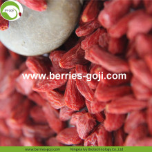 Factory Wholesale Nutrition Natural Malaysia Goji