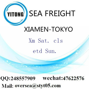 Xiamen Port LCL Consolidation To Tokyo
