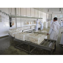 High Quality for Live Bird Reception live birds Crates rolling conveyor export to Guinea-Bissau Manufacturer