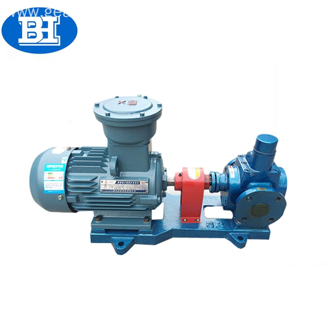 Low noise electric motor arc gear oil pump