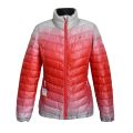 Ladies elegant colorful jacket