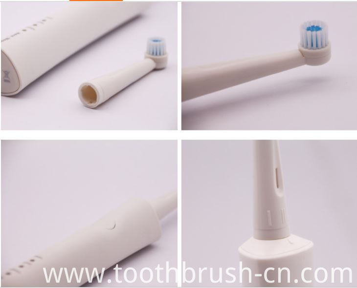 Rotating Electric Toothbrush