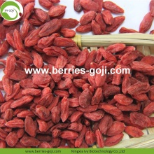 Factory Supply Healthy Fruit Sexual Strength Goji
