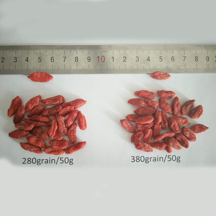 Natural and Organically Grown Goji berry bulk