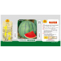 F1 hybrid high quality watermelon seeds for sales