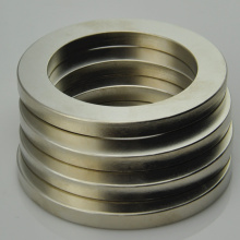 China for Multipole Ring Magnet N38 neodymium rare earth ring magnets supply to Argentina Exporter