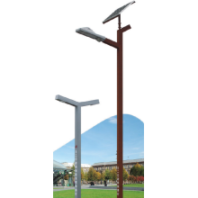 Reliable for Solar Street Light Pole S20 Series New Special Steel supply to Syrian Arab Republic Factory