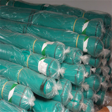 Scaffold Debric Net for Construction
