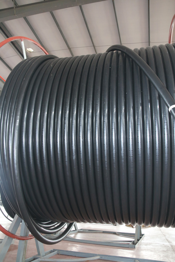 Flexible HP Water Flexible Hose