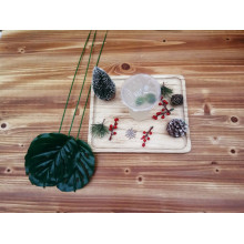 Simple Natural Wooden Food Dish
