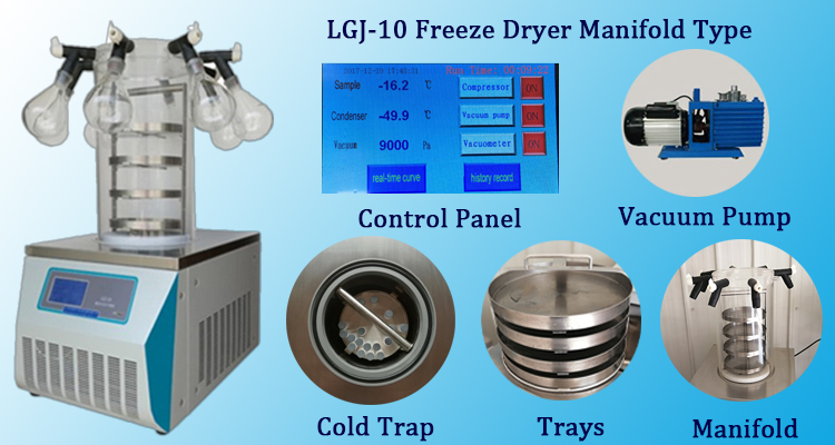 LGJ-10 maniflod freeze dryer