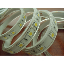Waterproof 24V 5050 Flexible LED Strip
