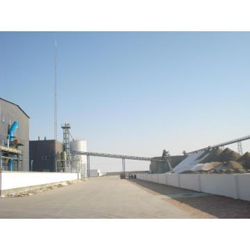 1200t/d Cottonseed Protein Production Line