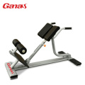 Commercial Gym Exercise Equipment Back Extension Bench