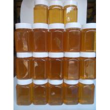 Online Exporter for Polyfloral Honey Natural Pure Vitex Honey supply to United States Minor Outlying Islands Importers