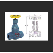 Internal Thread Cast Steel Liquid Ammonia Globe Valve