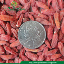 Raw herbs Goji berries /500 grains per 50g