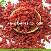 Sale Anti Cancer Nutrition Conventional Goji Berries