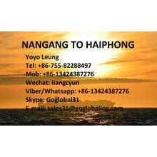 Special for Asia Shipping Line Foshan Nangang Sea Freight to Vietnam Haiphong export to Germany Manufacturer