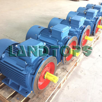 6HP Y2 Three Phase Induction Motor Price