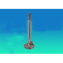 Truck Engine Valve Spare Parts with Nitriding
