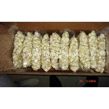 Vacuum packed fresh peeled garlic