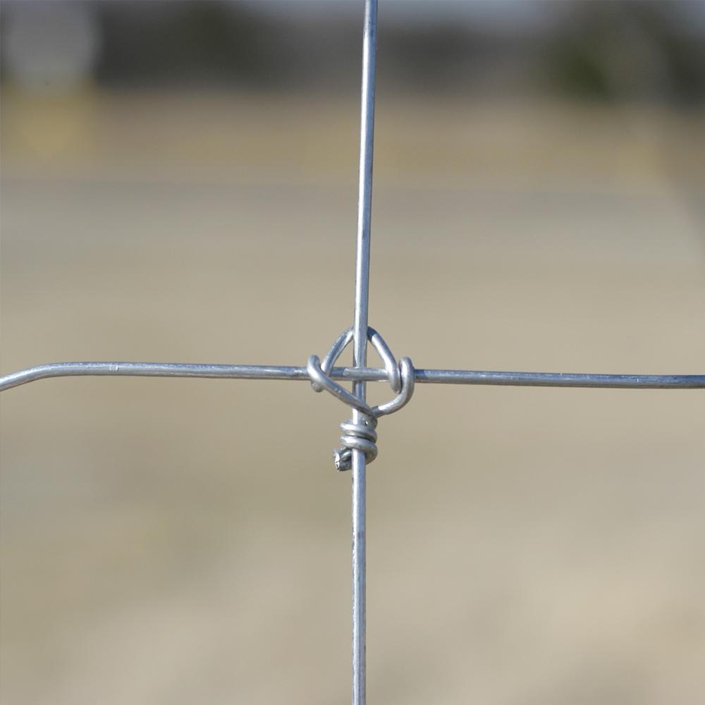 Galvanized Animal Deer Metal Mesh Fence China Manufacturer