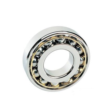 Single Row Deep Groove Ball Bearing (6044)