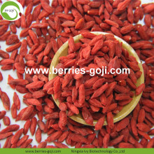 For Sale Fruit Anti Cancer Common Goji Berries