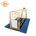 Top seller pig farrowing crate apartment