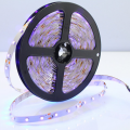Chinese Factory High Quality Waterproof IP65 RGB 5050 LED Strip Light With Remote Controller