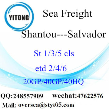 Shantou Port Sea Freight Shipping To Salvador