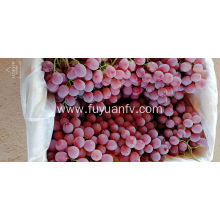 Pink color Red grapes
