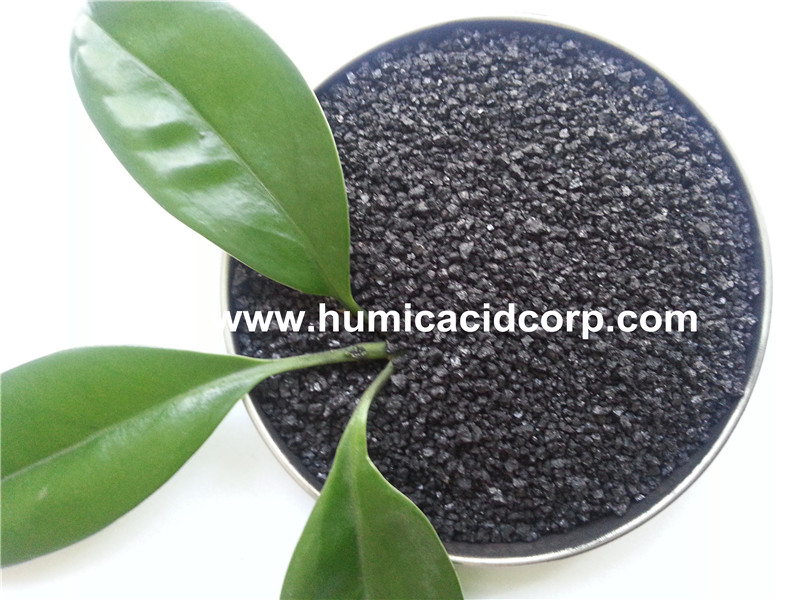 K Humate fertilizer for plants and soil