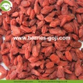 Factory Supply Fruits Nutrition Price Goji Berry
