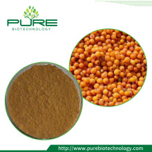 Sea buckthorn fruit Extract/ Sea buckthorn leaf Extract