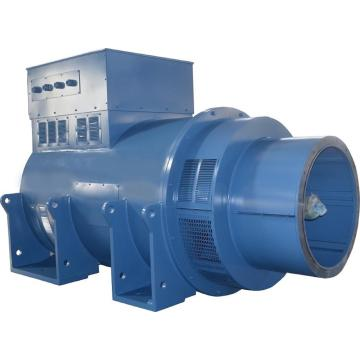 Industrial Synchronous Lower Voltage Generators