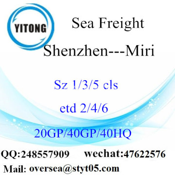 Shenzhen Port Sea Freight Shipping To Miri