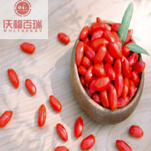 New crop organic goji berries for lose weight