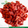 Factory Supply New harvest Organic Dried Goji