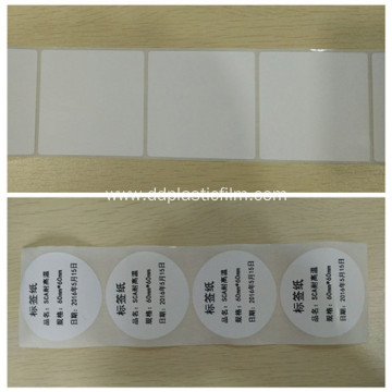 Non Tearable PP Synthetic Paper