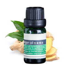 Pure Natural Ginger Essential Oil