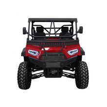 1000CC 4X4 UTV youth off road vehicles