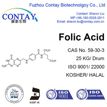 Contay Folic Acid Folate Supplement 59-30-3