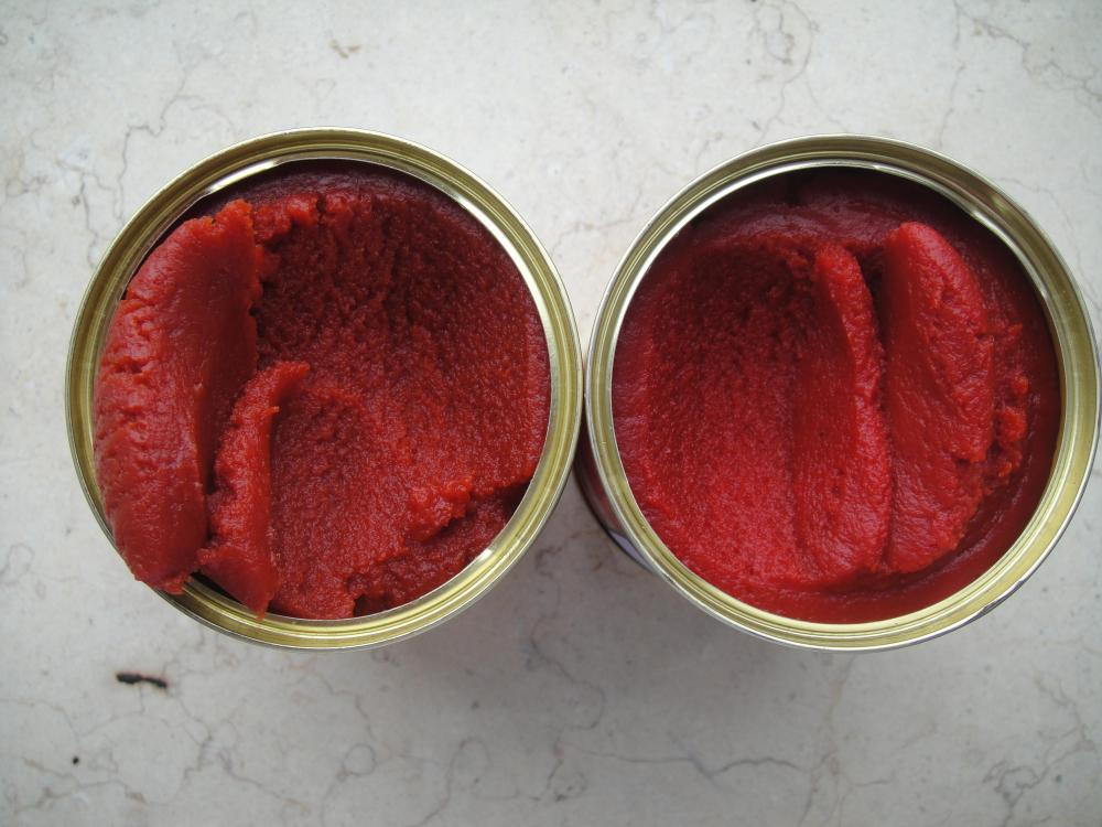 70g-4500g 28-30% brix canned tomato paste for Togo