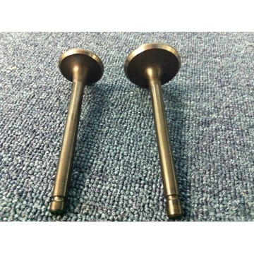 Racing Car Inlet and Outlet Engine Valve