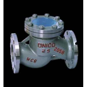 Standard Flange Connection Type Lifting Check Valve