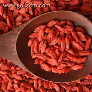 No.1 Dehydrated Organic Delicacy Goji Powder